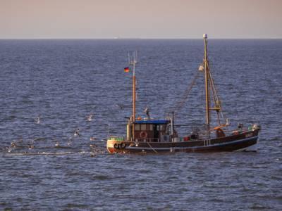 Krabbenfang vor Wangerooge