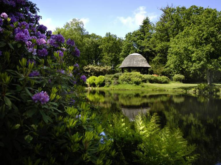 Schlosspark Luetetsburg