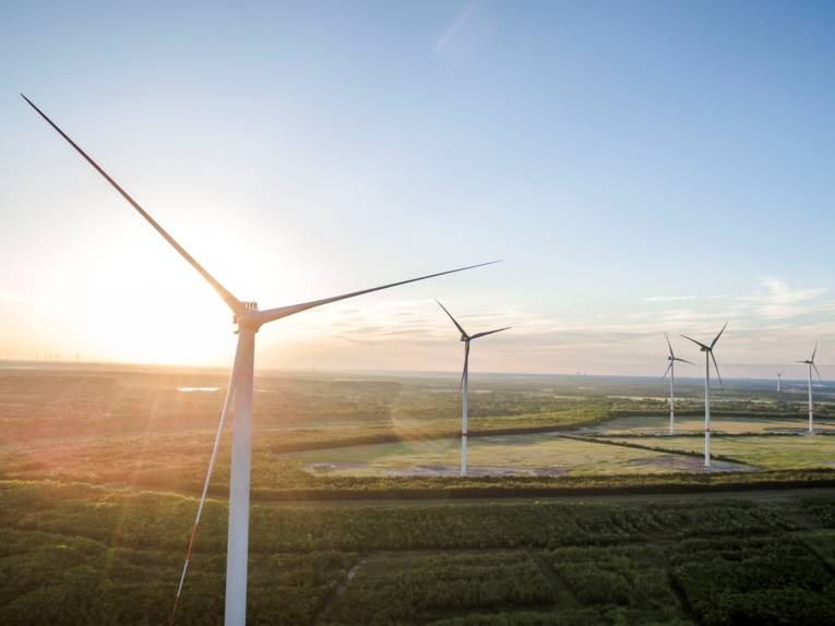 Teil des enercity-Windparks in Klettwitz.